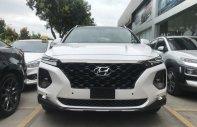 Hyundai SantaFe 2019 bản đặc biệt, giao ngay, giá cực tốt giá 1 tỷ 135 tr tại Tp.HCM