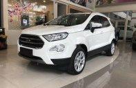 Cần bán Ford EcoSport đời 2019, màu trắng, giá tốt giá 689 triệu tại Tp.HCM