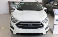 Cần bán xe Ford EcoSport đời 2019, màu trắng, xe nhập, giá tốt. Lh 0946519127 giá 545 triệu tại Tp.HCM