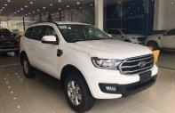 Bán Ford Everest MT 2019, xe nhập, 999tr giá 999 triệu tại Tp.HCM
