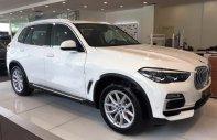 Bán BMW X5 xDrive40i 2019, màu trắng, nhập khẩu   giá 4 tỷ 199 tr tại Tp.HCM