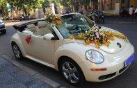 Bán ô tô Volkswagen New Beetle 2.5 AT năm sản xuất 2005, màu kem (be), xe nhập   giá 410 triệu tại Đà Nẵng