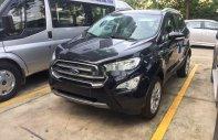Bán Ford EcoSport đời 2019, màu đen, ưu đãi lớn giá 605 triệu tại Tp.HCM