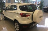 Bán Ford EcoSport Titanium 1.5L AT sản xuất năm 2019, màu trắng giá 590 triệu tại Hà Nội