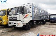 Bán xe tải Dongfeng 9 tấn đời 2019 B180 nhập khẩu  giá 600 triệu tại Bình Dương