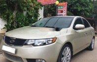 Cần bán lại xe Kia Forte đời 2010, nhập khẩu, giá tốt giá 330 triệu tại Ninh Bình