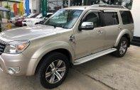 Cần bán Ford Everest 2.5 L Limited sản xuất năm 2009, nhập khẩu  giá 455 triệu tại Tp.HCM