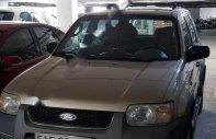 Bán ô tô Ford Escape sản xuất năm 2002, màu vàng, nhập khẩu nguyên chiếc chính hãng giá 176 triệu tại Tp.HCM