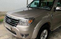 Bán Ford Everest sản xuất năm 2010, màu hồng xe còn mới nguyên giá 423 triệu tại Gia Lai