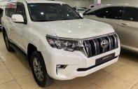 Bán Toyota Prado VX năm 2019, màu trắng, xe nhập như mới giá 2 tỷ 380 tr tại Hà Nội