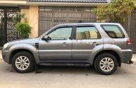 Cần bán lại xe Ford Escape XLT AT 2010, màu xám, 395 triệu giá 395 triệu tại Tp.HCM