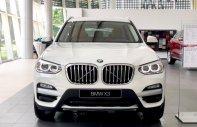 Nhận nhiều ưu đãi - tặng phụ kiện chính hãng khi mua xe BMW X3 xDrive30i 2019, nhập khẩu, LH 0949.194.198 giá 2 tỷ 424 tr tại Tp.HCM