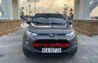Bán ô tô Ford EcoSport Titanium 1.5L AT đời 2015, số tự động giá 445 triệu tại Bình Dương