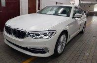 BMW Quận 2 - Cần bán BMW 530i sản xuất 2019, màu trắng, giá cạnh tranh giá 2 tỷ 969 tr tại Tp.HCM