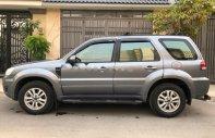 Bán Ford Escape AT đời 2010, màu xám, odo 50.000 km giá 395 triệu tại Tp.HCM