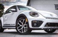 Beetle Dune đẳng cấp xe Đức giá ưu đãi nhất tháng 3, xe nhập khẩu cuối cùng cập cảng giá 1 tỷ 699 tr tại Tp.HCM
