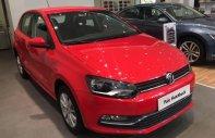 Volkswagen Polo Hatchback xe Đức nhập khẩu chính hãng giá 695 triệu tại Quảng Ninh