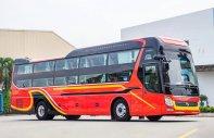 TP Cà Mau, bán SAMCO 34 giường VIP Hyundai 2020  giá 3 tỷ tại Cà Mau