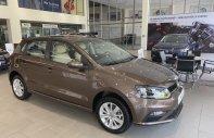 Bán xe Volkswagen Polo hatchback đời 2019, màu nâu, nhập khẩu nguyên chiếc giá 695 triệu tại Quảng Ninh