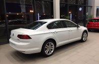 Bán xe Volkswagen Passat comfort màu trắng duy nhất, màu trắng, nhập khẩu chính hãng - ưu đãi khủng giá 1 tỷ 380 tr tại Quảng Ninh