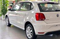 Volkswagen Polo Hatback - Vua dòng xe đô thị - Nhập khẩu nguyên chiếc 2020 giá 695 triệu tại Quảng Ninh